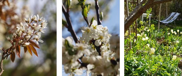 Haven i maj