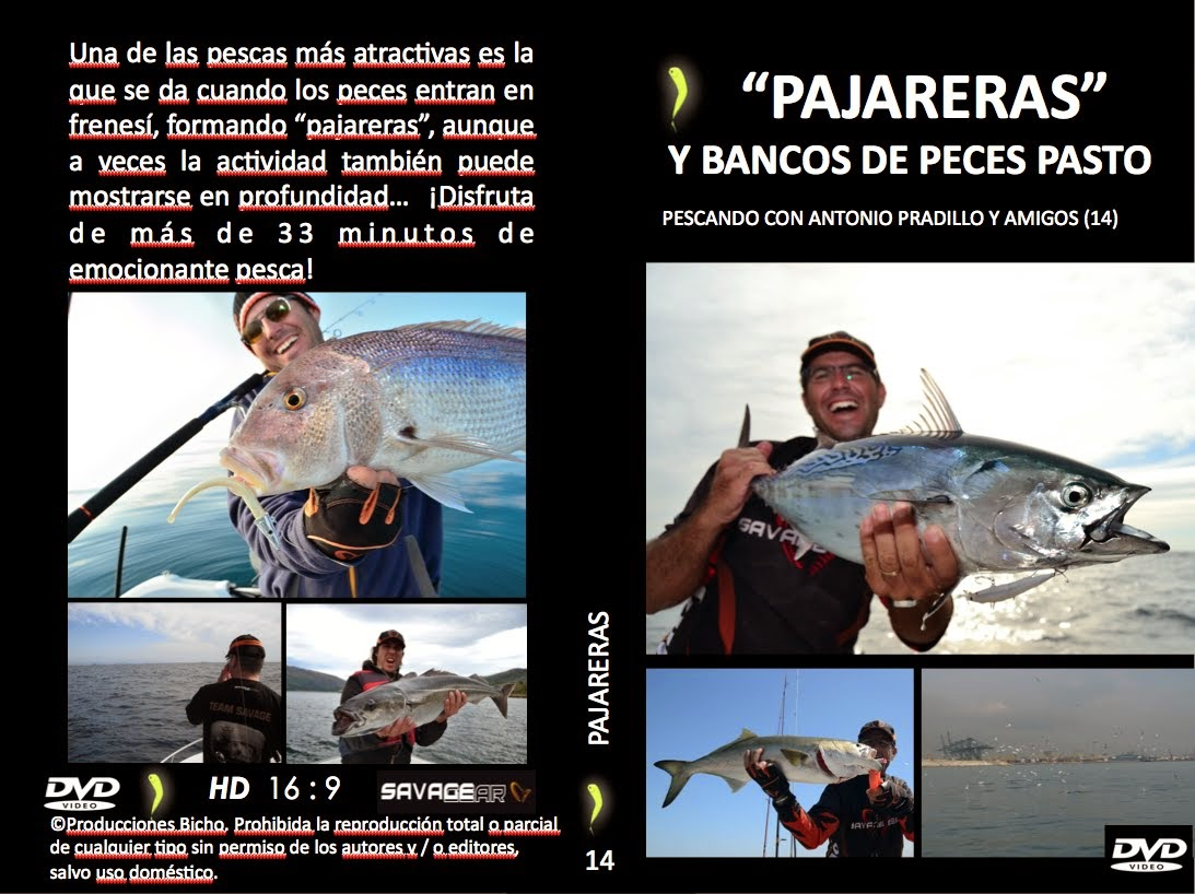 DVD PAJARERAS (click para ver trailer)
