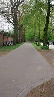 Bruges Beautiful Tree Lined Cycle Paths