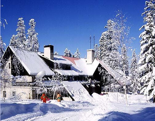 Borovets Bulgaria  City new picture : online ski website ski co uk has highlighted borovets in bulgaria as ...