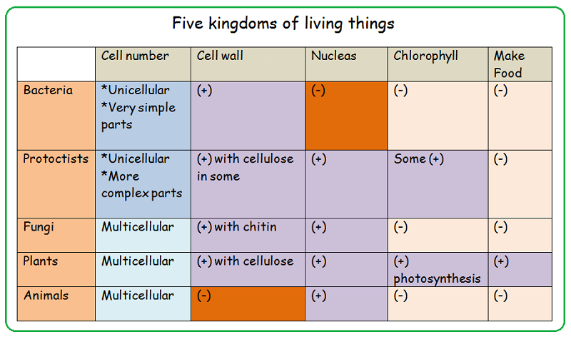 external image kingdoms+of+living+things.png