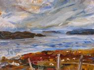 Wild in Shetland