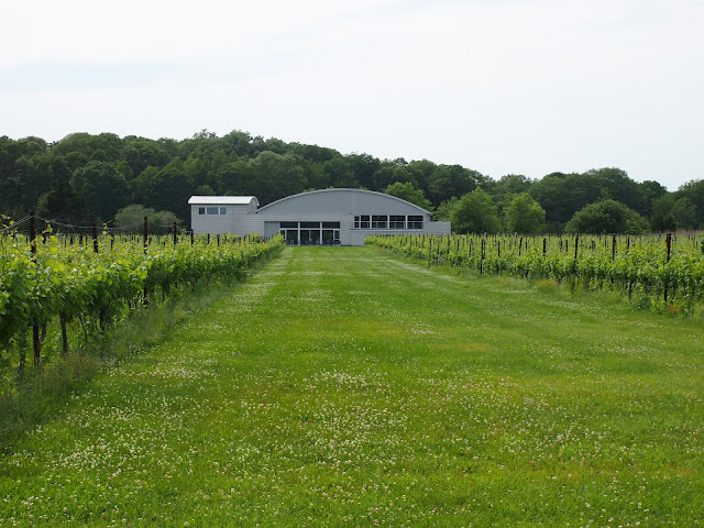 Saltwater Farms vineyard from outside