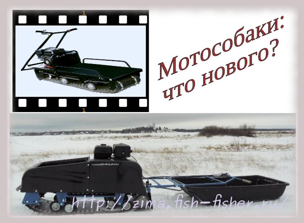Мотобуксировщики мотособаки для зимней рыбалки
