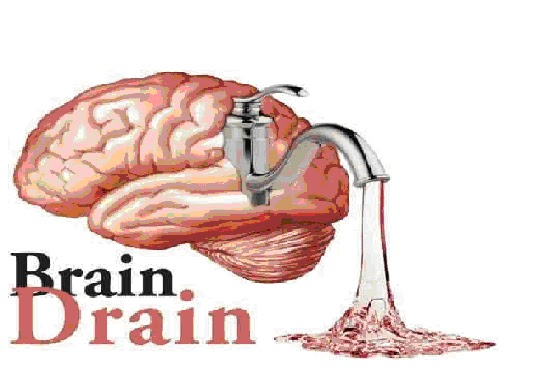 should brain drain be banned Brain drain occurs when highly qualified people are sent to anothercountry if reciprocation from the exchanging countries occurs,there is no reason to ban brain drain.