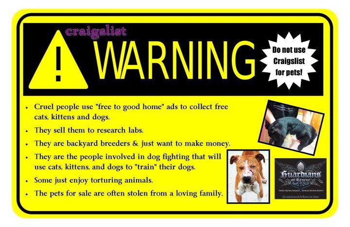 Craigslist Dogs Puppies Okc Oklahoma