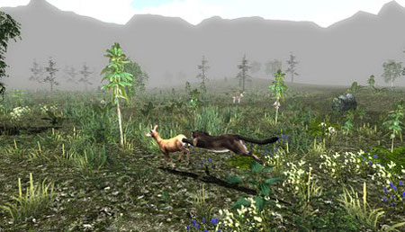 Untamed Life Of A Cougar PC Full Version
