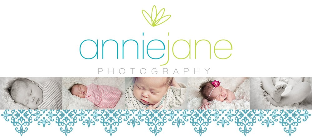 Annie Jane Photography  Binghamton Greene Vestal Newborn Maternity Family Photographer