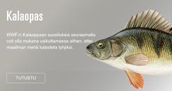 WWF:n kalaopas