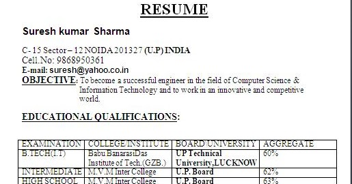 simple format of resume