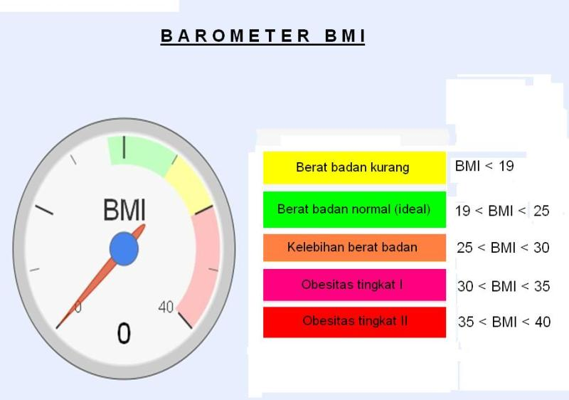 obesitas meter