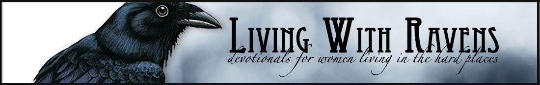 Brenda Wilbee: Devotionals for women living in hard situations.