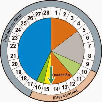 El control de las fechas en el método del ritmo es fundamental