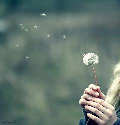 Esperemos que este amor no se esfume con el viento ..