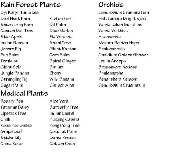amazon rainforest plants list. rainforest animals and plants list photo11 amazon