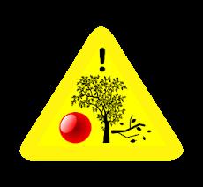 Alerta vigente de caída de árboles