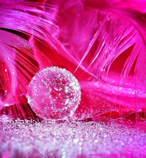 Pink fantasy wallpapers new 3d wallpaper for 3d wallpaper pink