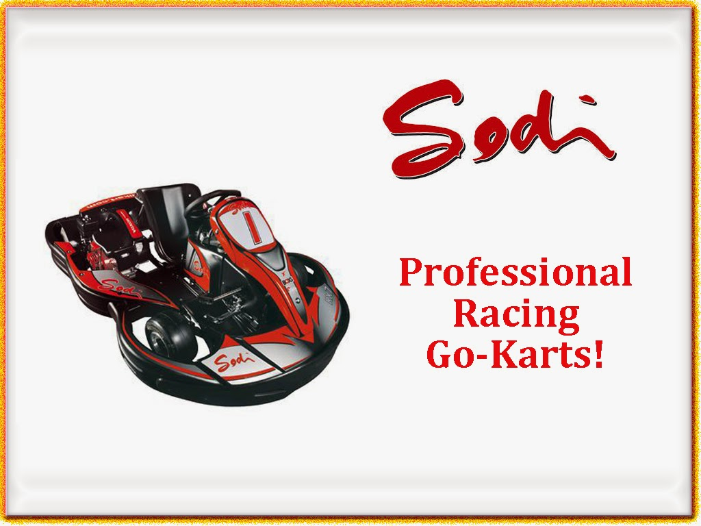 Sodi Professional Racing Go Carts in Pigeon Forge, TN