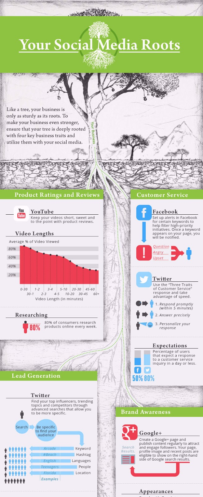 Infographie: Stratégie de médias sociaux pour le développement d'une entreprise