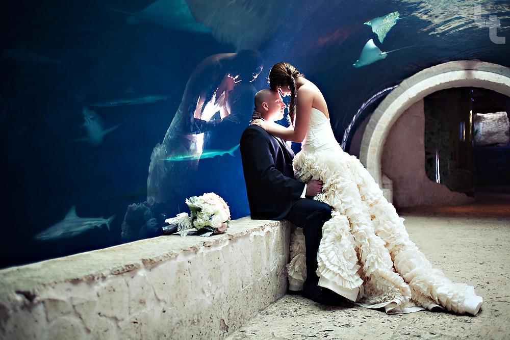 Dallas World Aquarium Wedding Calvin Aaron Dallas