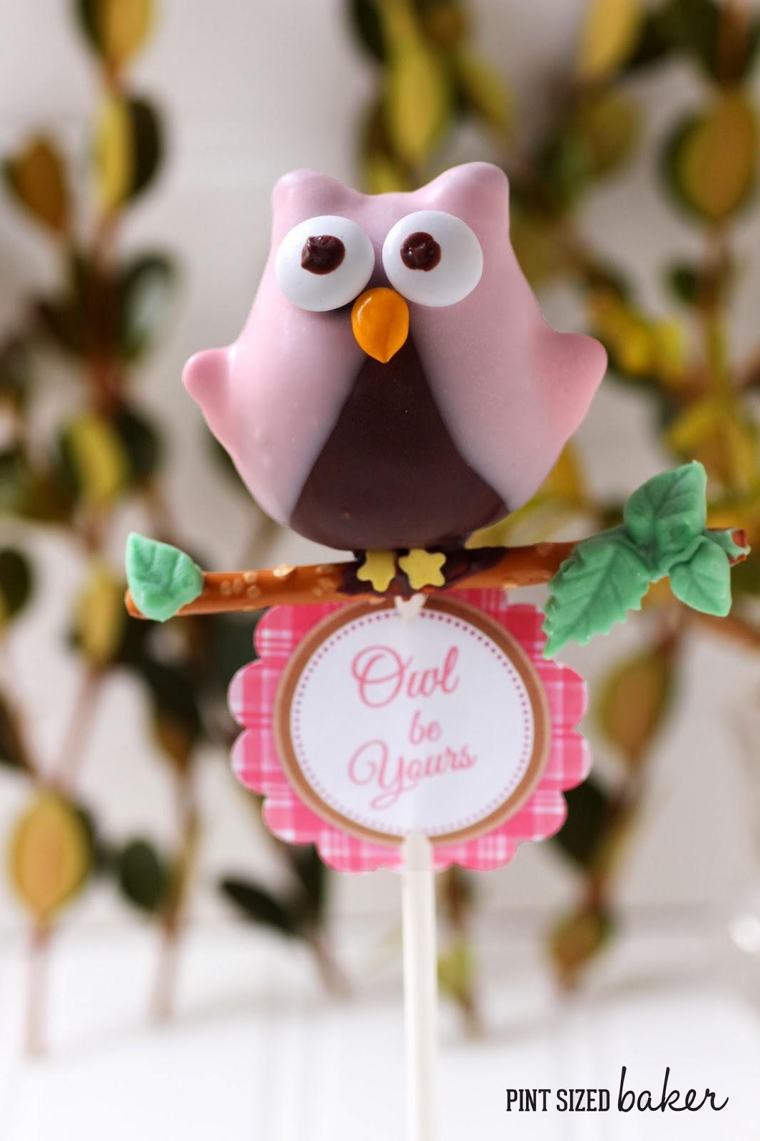 Owl Love You Cake Pops Pint Sized Baker