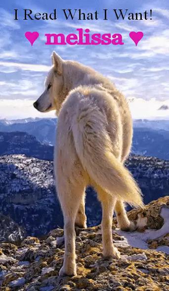 Melissa ♥Dog/Wolf Lover♥ Martin