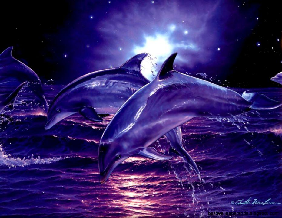Free Dolphin Desktop Backgrounds