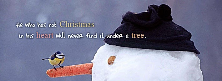 bird christmas fb covers