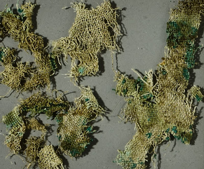 Stinging nettles reveal Bronze Age trade connections