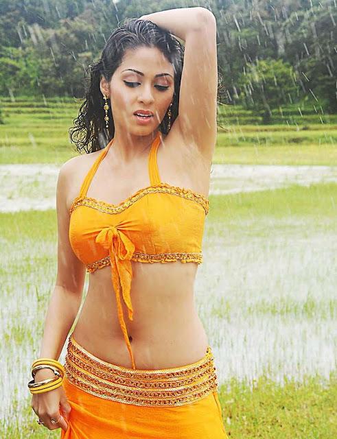 Actress Sada Navel Show Photos