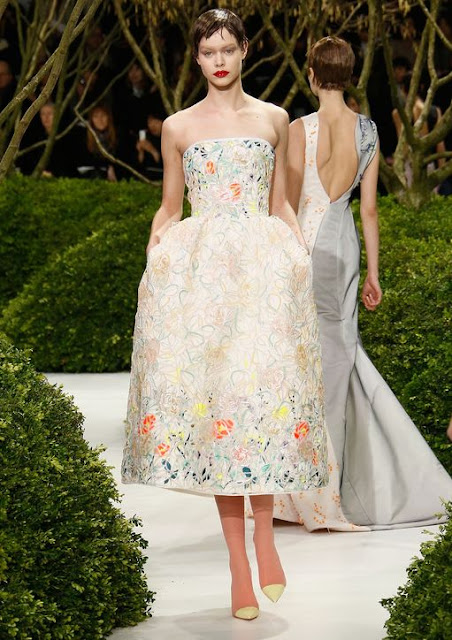 Christian Dior Spring 2013 Couture