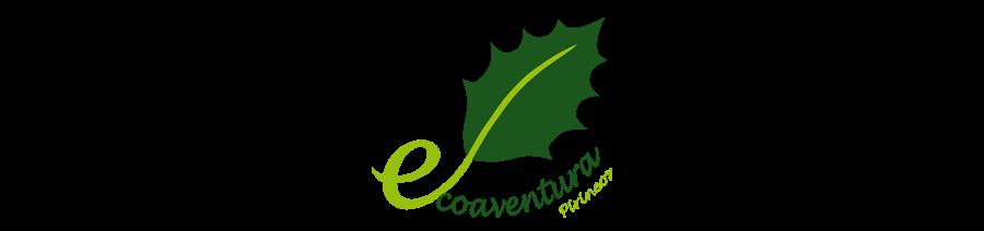 Campamentos Ecoaventura Pirineos