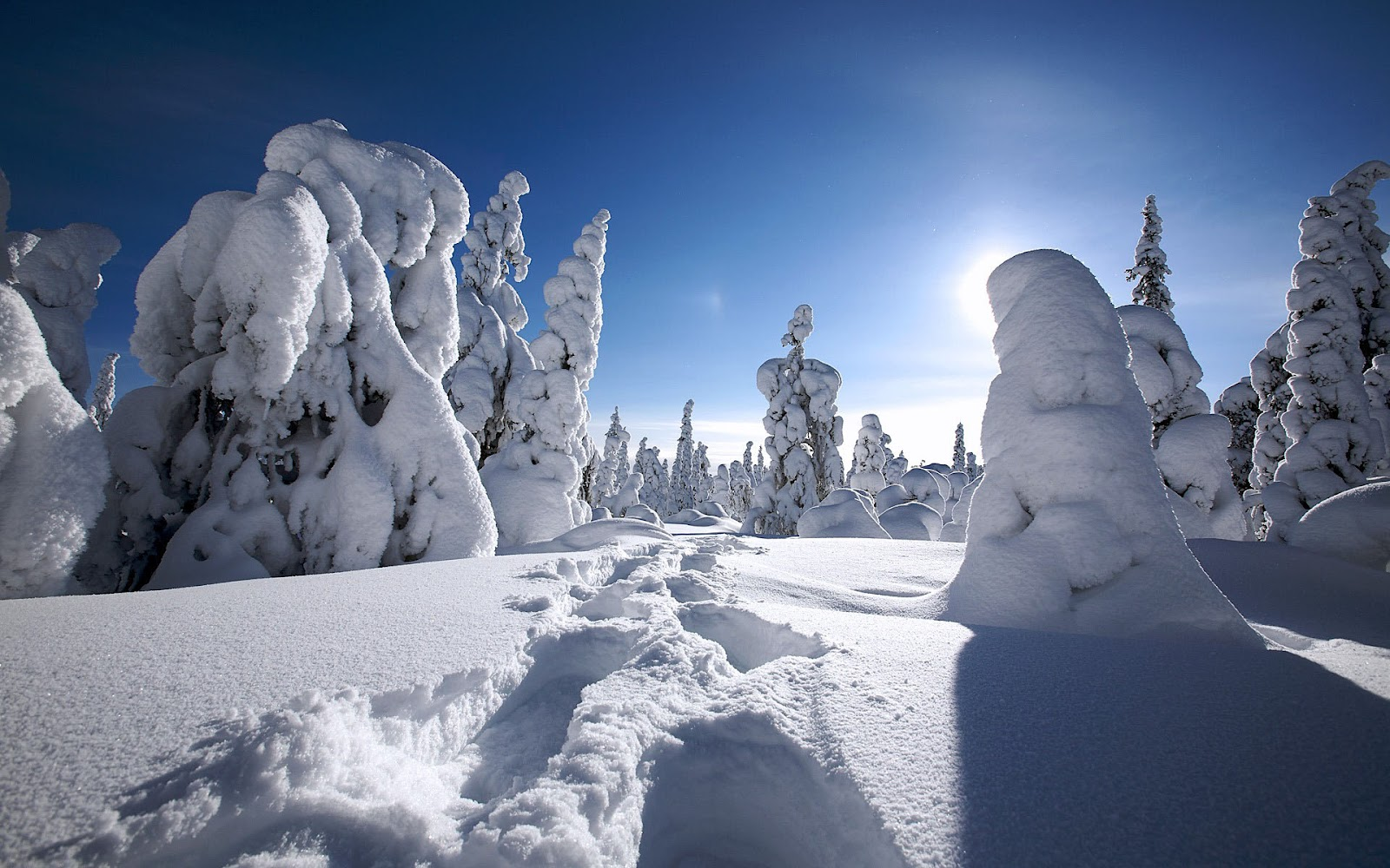 35 the best hd wallpapers and images for winter