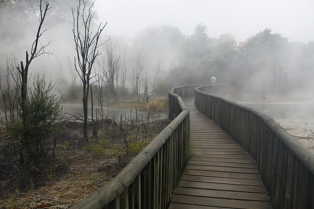 Kuirau Thermal Park