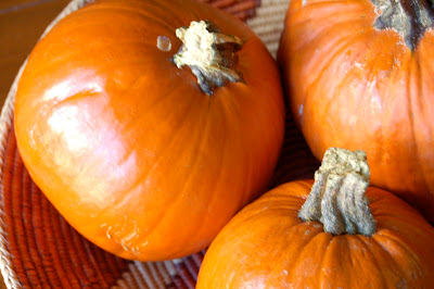 Pumpkin Season and Pumpkin Puree | www.kettlercuisine.com