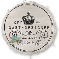 Gast-designer november bij CFY