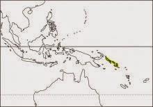 Guadalcanal rail