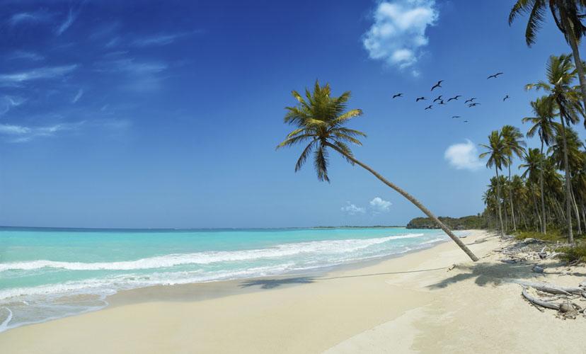 tropical beach wallpaper hd. tropical beach wallpaper hd