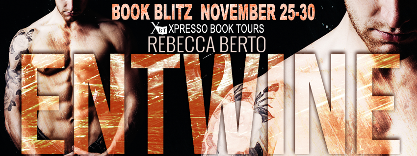 BOOK BLITZ - 25TH NOVEMBER