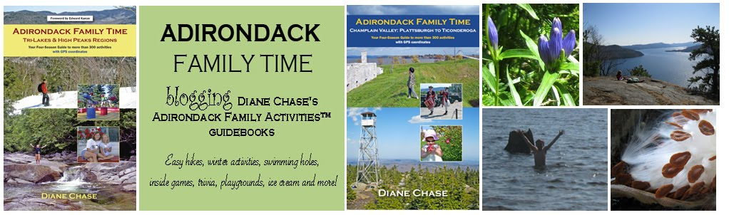Adirondack Family Time: The Adirondack Family Activities Guidebook Series: