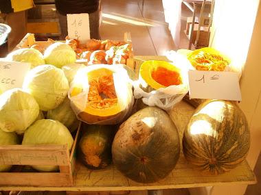 Pumpkins for Halloween soup