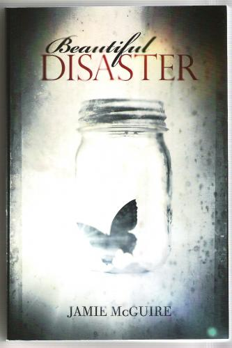 read beautiful disaster jamie mcguire pdf