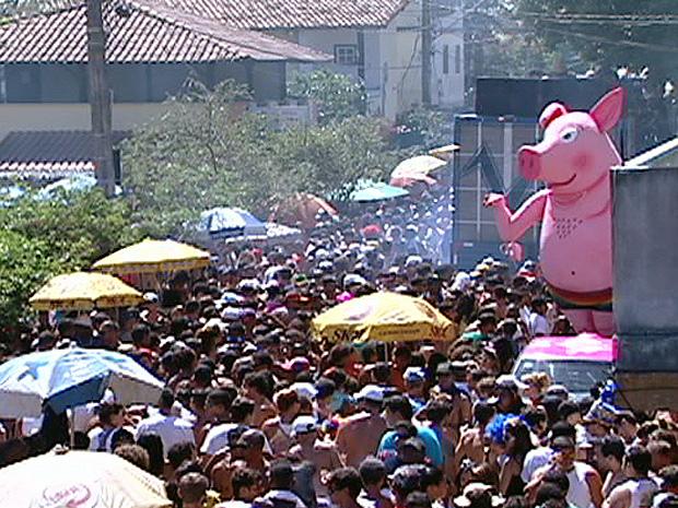 Tradicional bloco 'Porca da Quarta' fez desfile contra a homofobia (Foto: Reprodução/TV Gazeta)