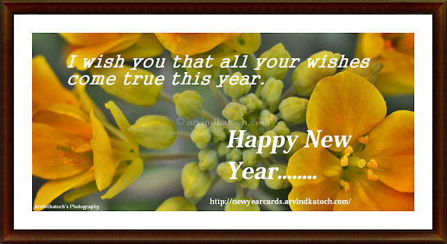 wishes, New Year, Card, Hd Card, Flower Card, New Year Flower Card