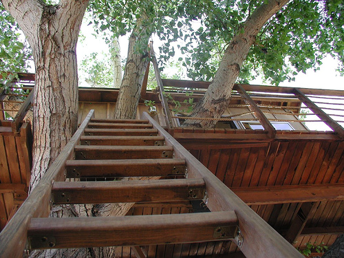 Staircase   If Itu0027s Compatible With Your Treehouse Design, A Small Staircase  Might Be The Best Option. Make Sure To Include A Railing For Safety.