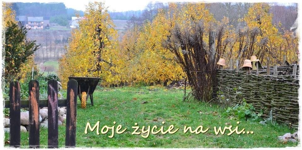 Moje życie na wsi