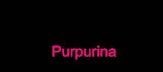 Ta Chovendo Purpurina