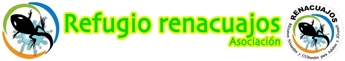Asociación Renacuajos