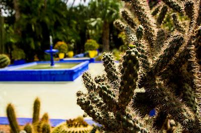 gardini Majorelle Marrakech