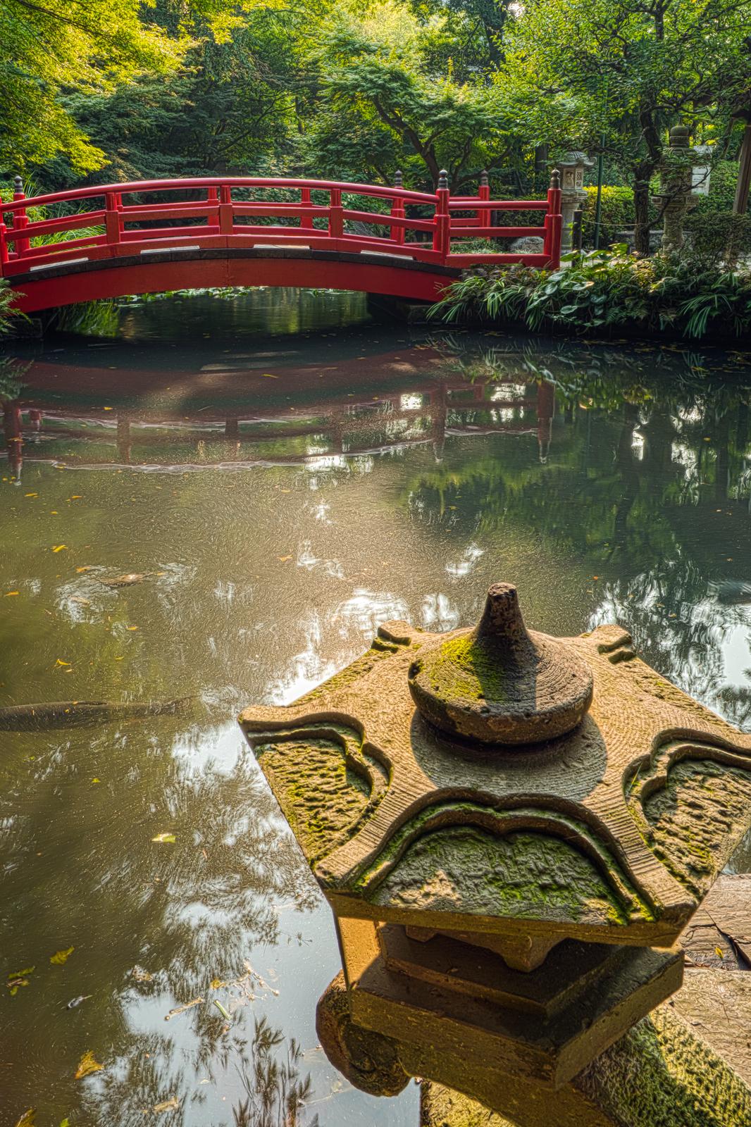 貫井神社、神橋と西側の池の写真